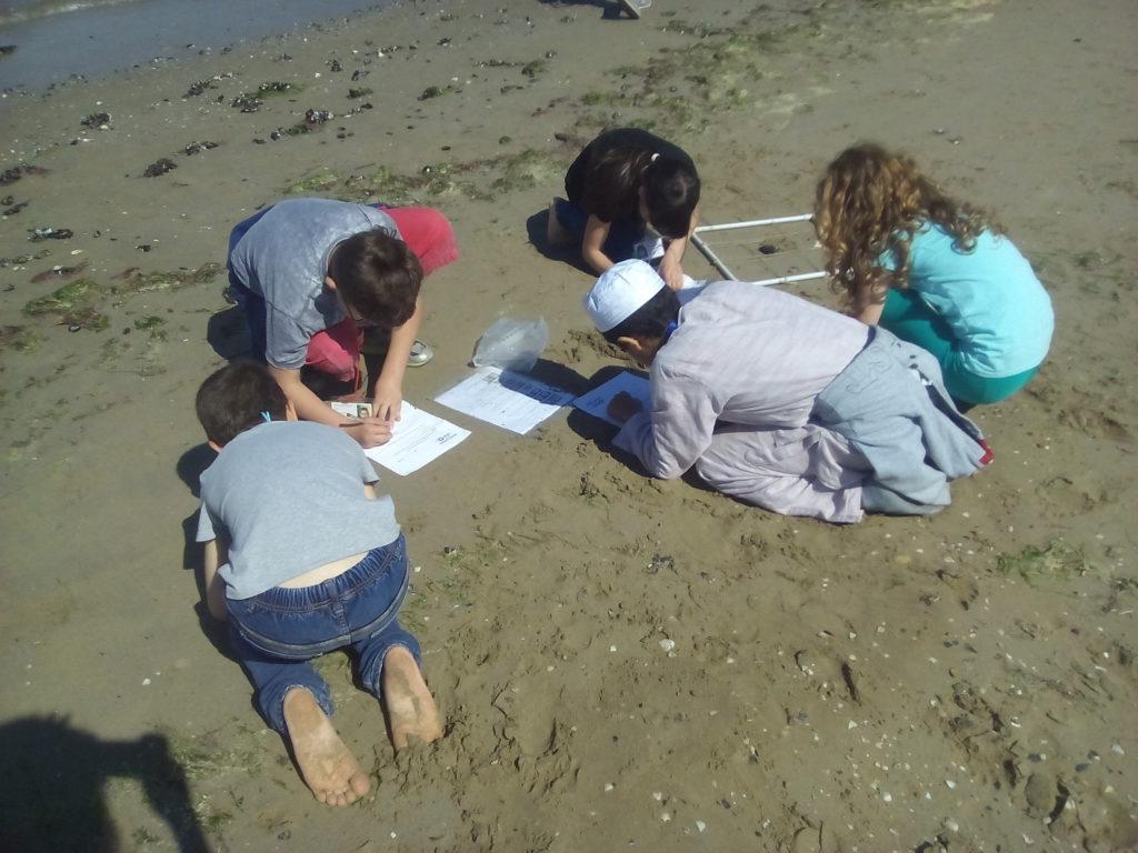 laboratorio in spiaggia