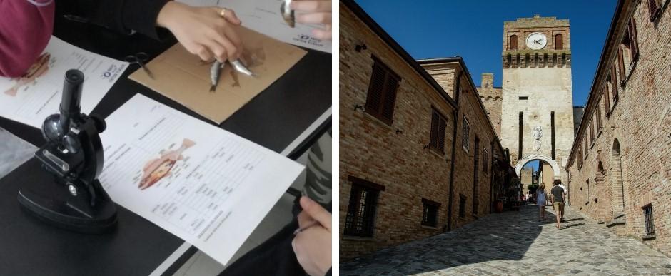 visita-guidata-gradara-castello-medioevo