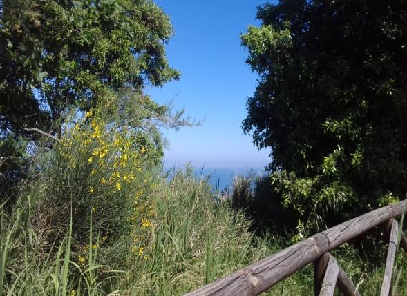 sentieri-naturali-monte-san-bartolo