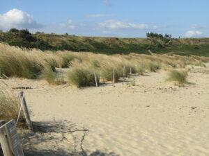 dune-di-sabbia